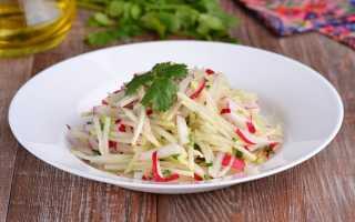 Салат с капустой кольраби, редисом и кинзой